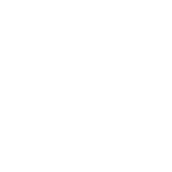 Institut de la ville durable